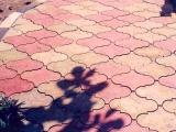 CVBT paving slaps at the police station in Tung Phon Didtrict, beautiful in Spanish pattern. ¿ØµºÒ··Ã§ä·Â »Ù㹺ÃÔàÇdzʶҹյÓÃǨ·ÕèÍÓàÀÍ·Ø觽¹ ÊǧÒÁã¹áººÅÇ´ÅÒÂÊà»¹