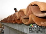 20-modern house new-styles-of-roof-tiles-images-photos-gallery
