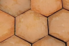 08 home-garden-hexagon-tiles-antique-floorand-wall-tiles-for-sale-textures-styles-design-pattern-variety-pictures- (20)