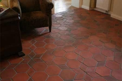 hexagon-tile-terracotta-floor tiles-for-interior-and-exterior-modern-home-styles-design-pattern-variety-pictures-images-photos-(9)