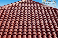 05-spanish-glazed-clay-tiles-roof-home-design-ideas-pictures-images-photos