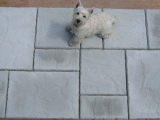 laying-stone-effect-concrete-tiles-images