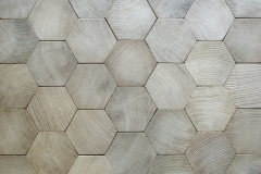 hexagonal-paving-slabs-wood-effect-model-tiles-images
