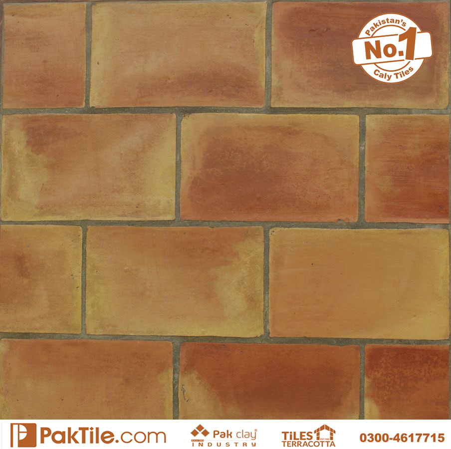 Buy Brick Tiles Pattern Shop in Lahore Porcelain Effect Colourful Range of Feature and Border Wall Tiles Patterns Ideas Pakistan Images