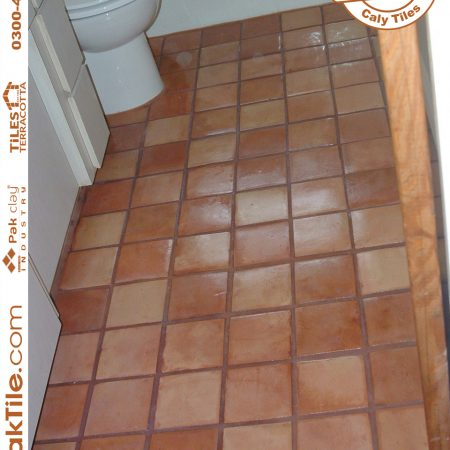 Pak Clay Buy carpet price brick concrete effect red clay terracotta home bathroom flooring tiles textures images in shop lahore karachi pakistan images stepping path driveway