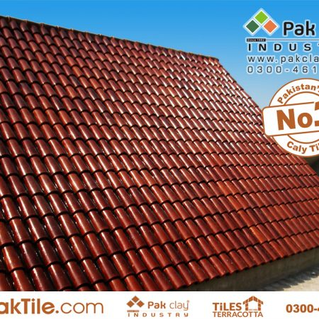 Pak Tile Khaprail Tiles Manufacturer Images (2)