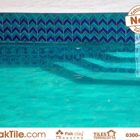 Swimming Pool Ceramic Tiles Price in Pakistan (4)
