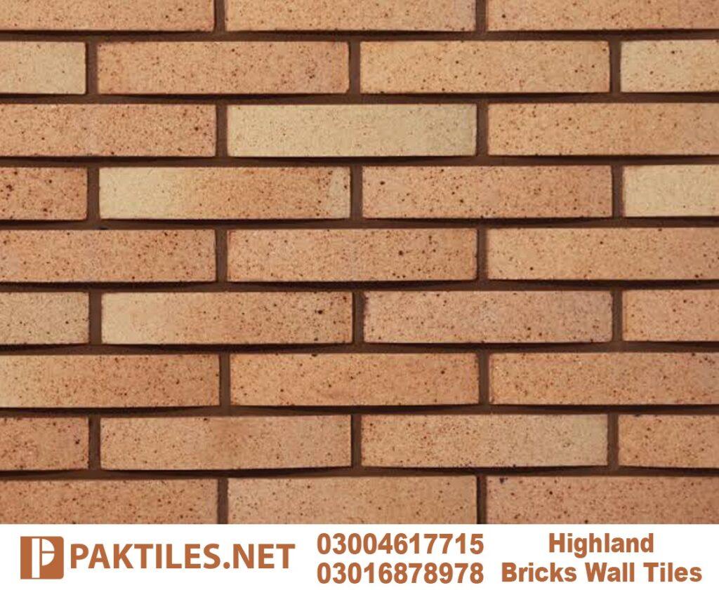 11 Yellow brick outdoor facade tiles in rawalpindi pakistan